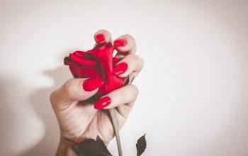 La soluzione comoda per unghie sempre perfette gli smalti semipermanenti